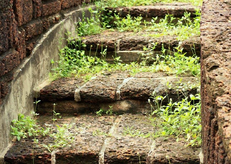 El ajardinar de piedra natural de las escaleras imagen de for Suelo de piedra natural