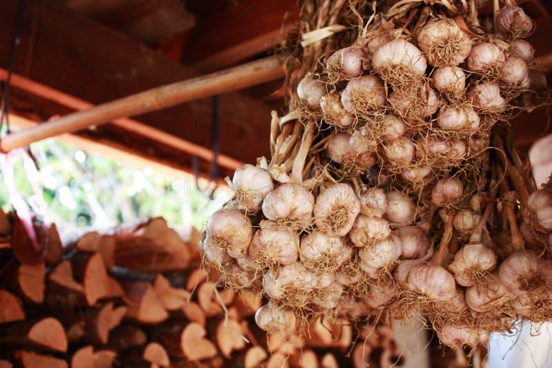 El ajo es un ingrediente dominante en cocinar asiático fotografía de archivo