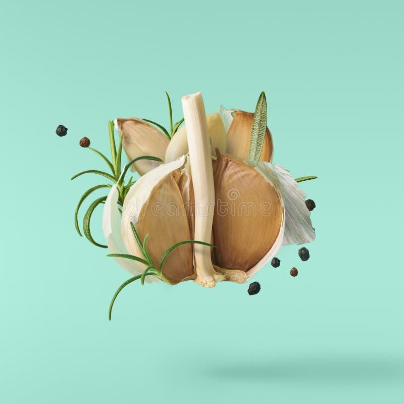El ajo que cae en aire con pimienta y las hierbas les gusta el romero en tur stock de ilustración