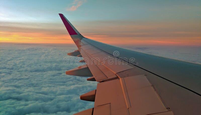 El ala en el cielo de la puesta del sol imagen de archivo libre de regalías