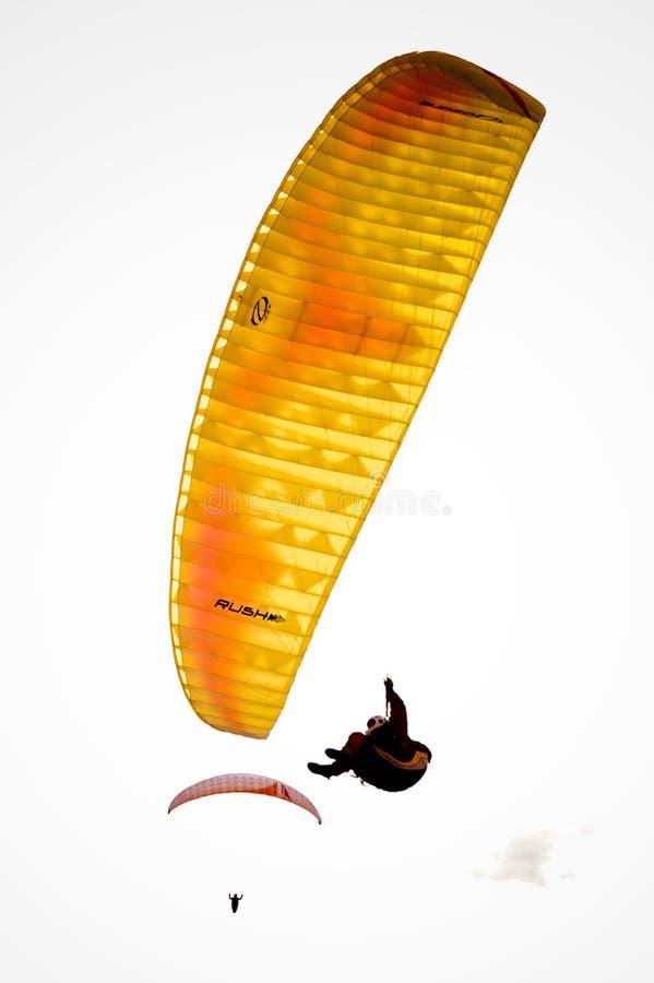 El ala flexible perdió 2 fotografía de archivo libre de regalías