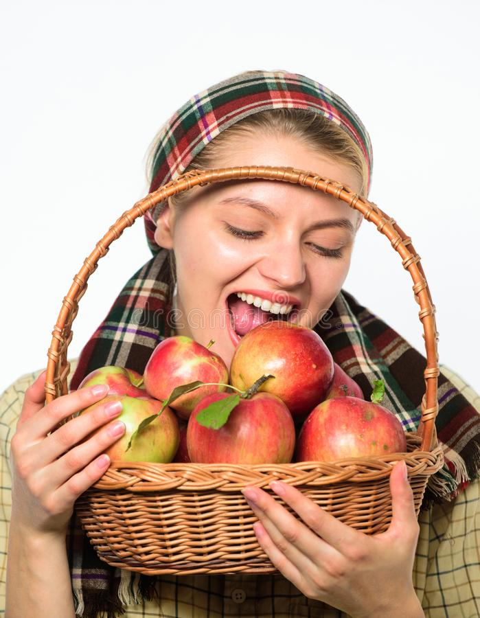 El aldeano de la mujer lleva las frutas naturales de la cesta Cuidado del jardinero del granjero de la señora sobre la nutrición  foto de archivo
