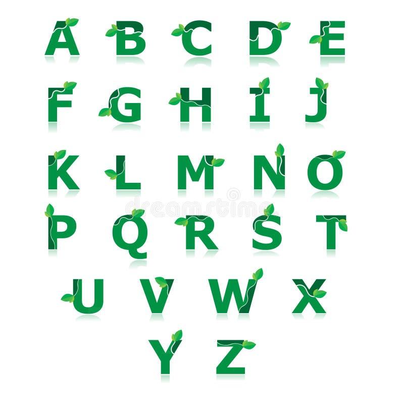 El alfabeto verde con la hoja fijó a vector de z ilustración del vector