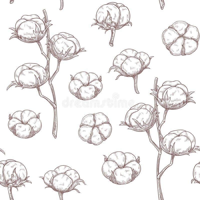 El algodón florece el modelo inconsútil stock de ilustración