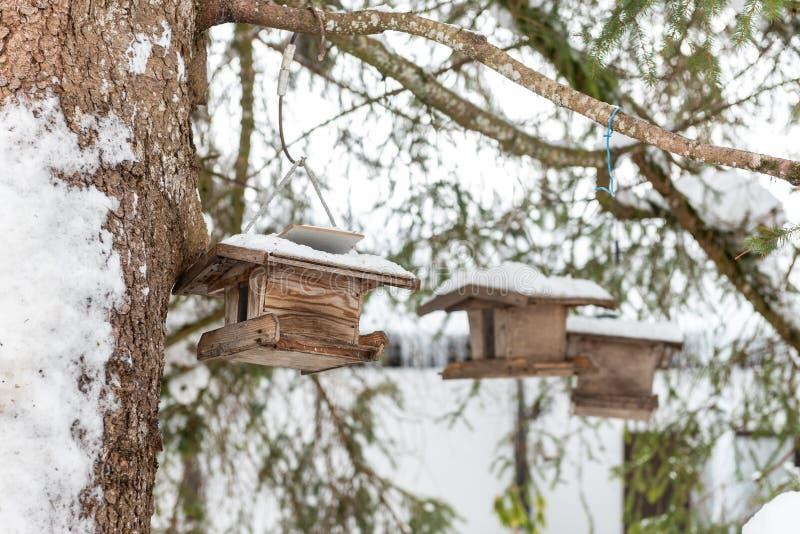 El alimentador del pájaro de madera hecho en casa en el árbol en invierno, debajo de la nieve fotografía de archivo libre de regalías