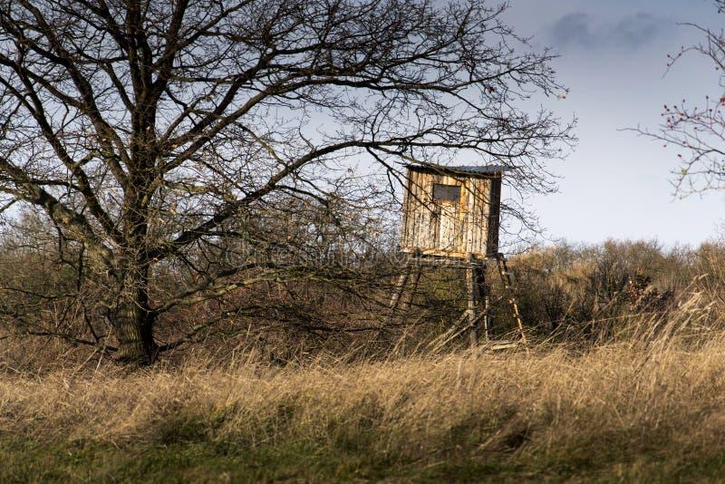 El alto asiento de los cazadores de madera oculta en bosque imagen de archivo