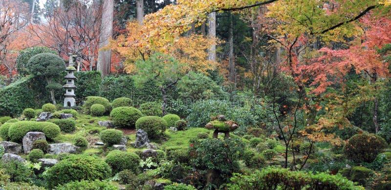 El amarillo anaranjado rojo y la hoja japonesa verde en la rama del árbol en el otoño cultivan un huerto fotografía de archivo