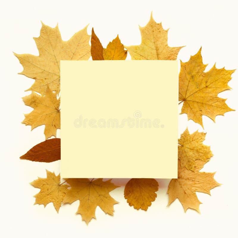 El amarillo deja el marco imagen de archivo