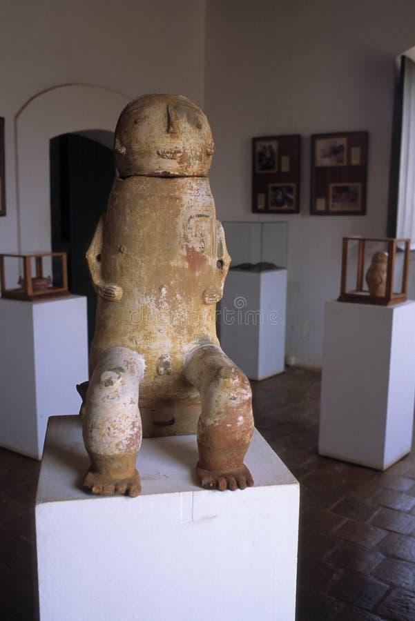 El Amazonas de cerámica fotos de archivo libres de regalías