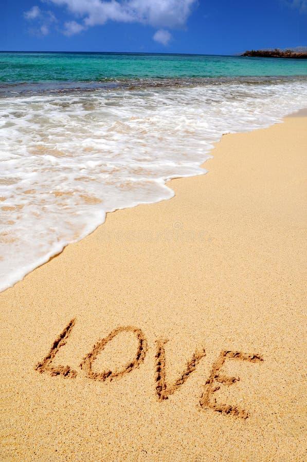 El amor canta en la playa foto de archivo