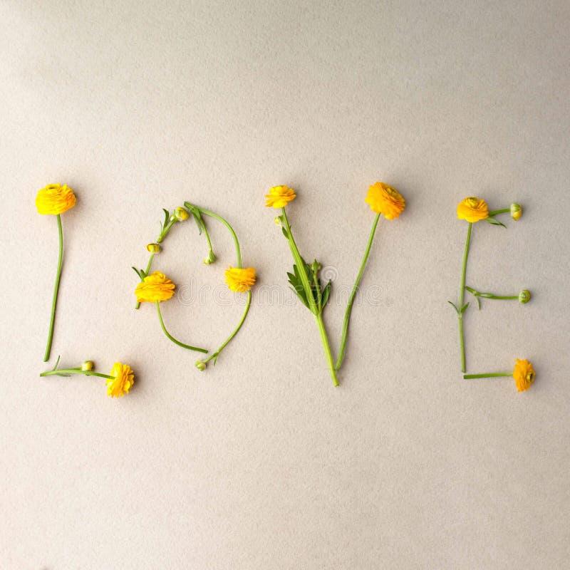 El amor de la palabra hizo de ramas amarillas de las flores en fondo gris El día de tarjeta del día de San Valentín, día de las m imagen de archivo libre de regalías