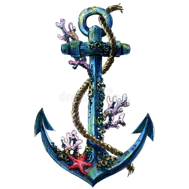 El ancla de mar del vintage con la cáscara, coral, aisló el objeto de la acuarela stock de ilustración