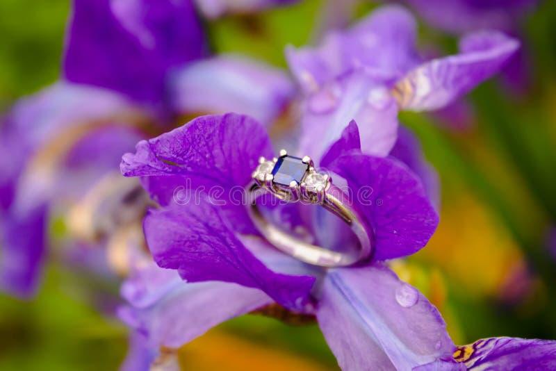 El anillo de compromiso con los diamantes y el zafiro se encaramaron en una flor púrpura imágenes de archivo libres de regalías