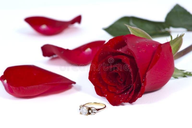 El anillo de diamante de oro y se levantó imagen de archivo libre de regalías