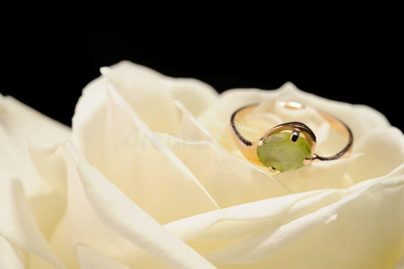 El anillo en un blanco se levantó fotografía de archivo libre de regalías