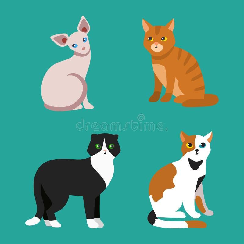 El animal adorable joven mullido de la historieta del retrato lindo del animal doméstico de la raza del gato y la diversión bonit ilustración del vector