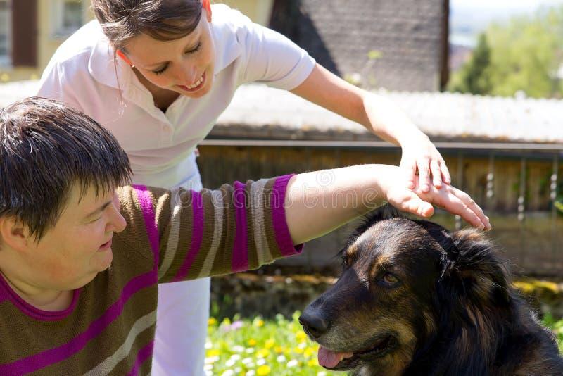 El animal ayudó a terapia con un perro fotos de archivo