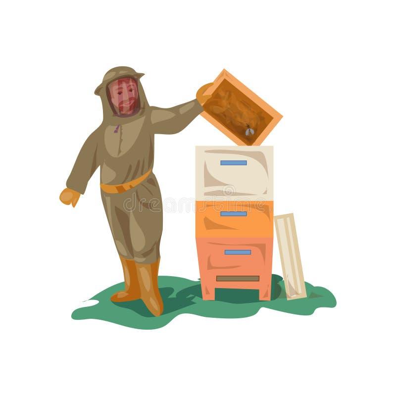 El apicultor en el equipo de la ropa toma el marco de madera de la miel ilustración del vector