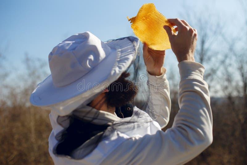 El apicultor tiene control sobre un pedazo con el nuevo panal, en fondo de la naturaleza Tiro exterior horizontal foto de archivo libre de regalías