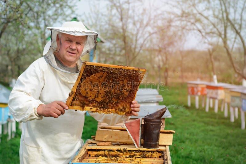 El apicultor trabaja en una colmena cerca de las colmenas Trabajo de la primavera sobre el colmenar fotos de archivo