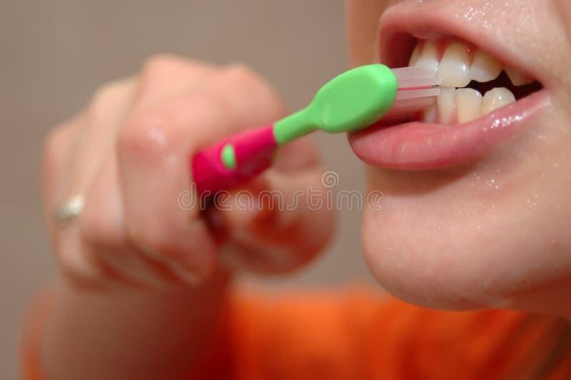 El aplicar con brocha de dientes imagen de archivo libre de regalías
