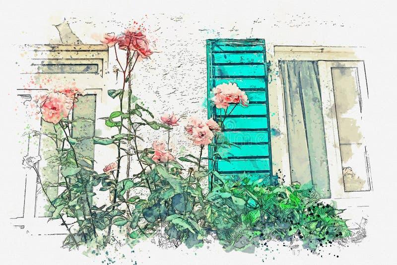 El arbusto floreciente de rosas rosadas libre illustration