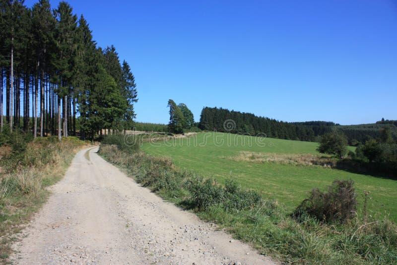 El Ardenne en la ubicación La Roche en Bélgica imagen de archivo
