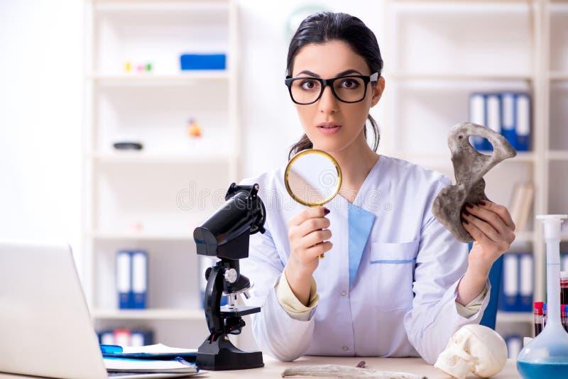 El arqueólogo de sexo femenino joven que trabaja en el laboratorio fotografía de archivo