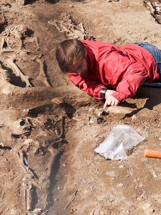 El arqueólogo desentierra cuidadosamente los huesos humanos imagen de archivo