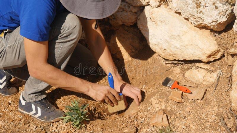 El arqueólogo joven trabaja en un sitio arqueológico foto de archivo