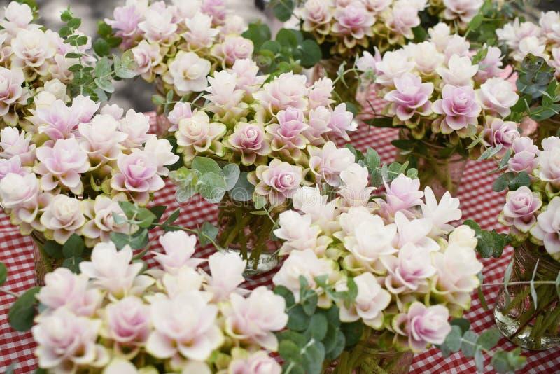 El arreglo de las flores en un mercado de los granjeros, jengibre planta la floración fotos de archivo
