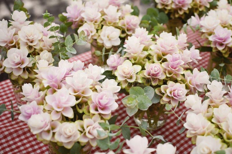 El arreglo de las flores en un mercado de los granjeros, jengibre planta la floración imágenes de archivo libres de regalías