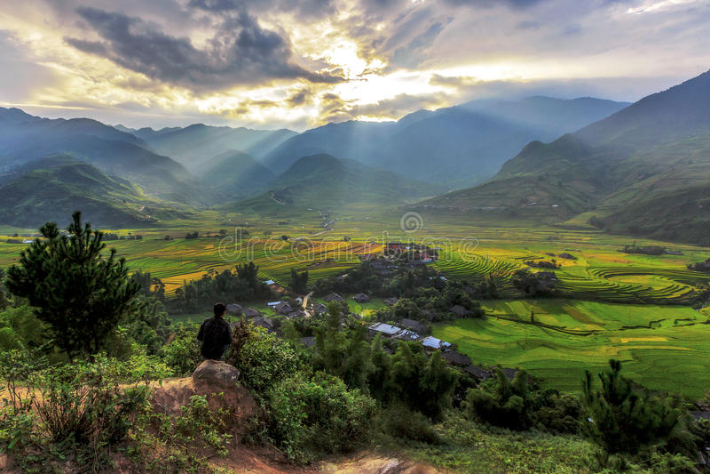 El arroz coloca en colgante en el cang chai, Vietnam de MU fotografía de archivo