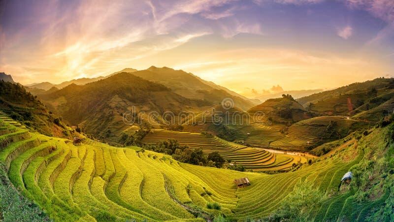 El arroz coloca en la puesta del sol colgante, MU chang chai, Yen Bai, Vietnam foto de archivo libre de regalías