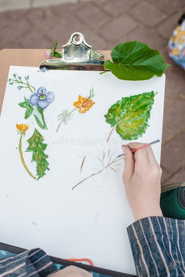 el artista creativo pinta una imagen colorida Primer de manos y del cepillo en curso de pintura al aire libre fotos de archivo libres de regalías