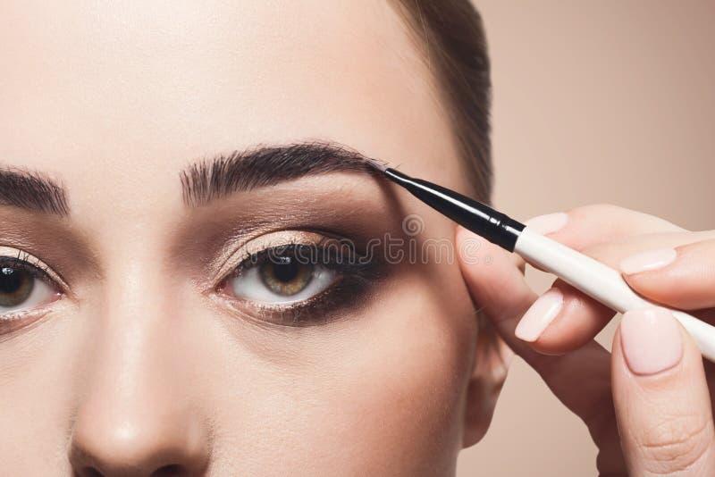 El artista de maquillaje aplica la sombra de la ceja con el cepillo, belleza fotos de archivo libres de regalías