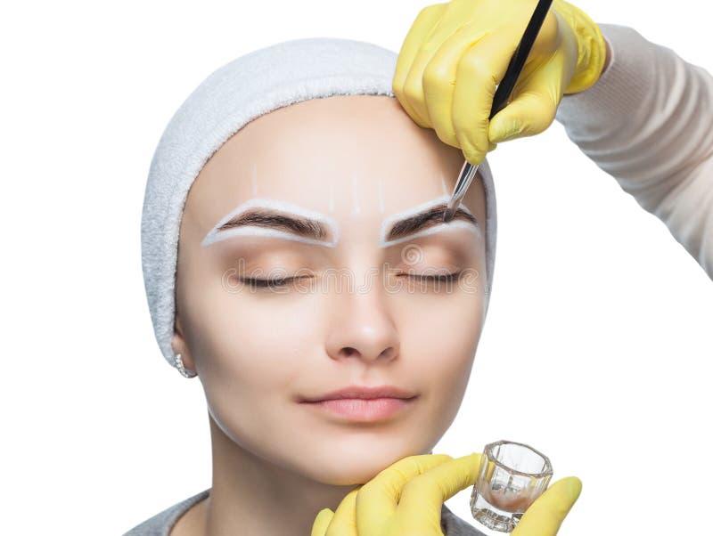 El artista de maquillaje aplica un tinte de la ceja de las pinturas en las cejas de una chica joven foto de archivo