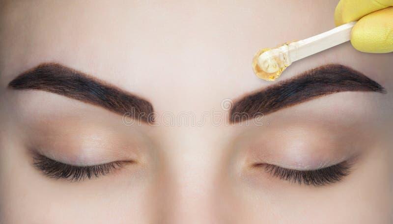 El artista de maquillaje despluma sus cejas, antes del procedimiento del maquillaje permanente imágenes de archivo libres de regalías