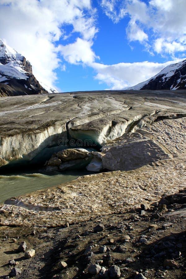 El Athabasca famoso Galcier/Columbia Icefield en Alberta/la Columbia Británica - Canadá fotos de archivo