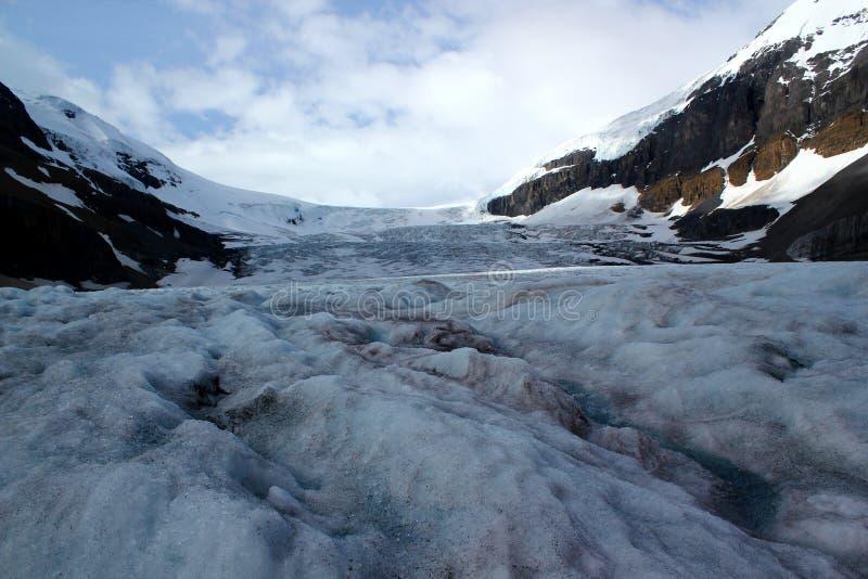 El Athabasca famoso Galcier/Columbia Icefield en Alberta/la Columbia Británica - Canadá fotos de archivo libres de regalías