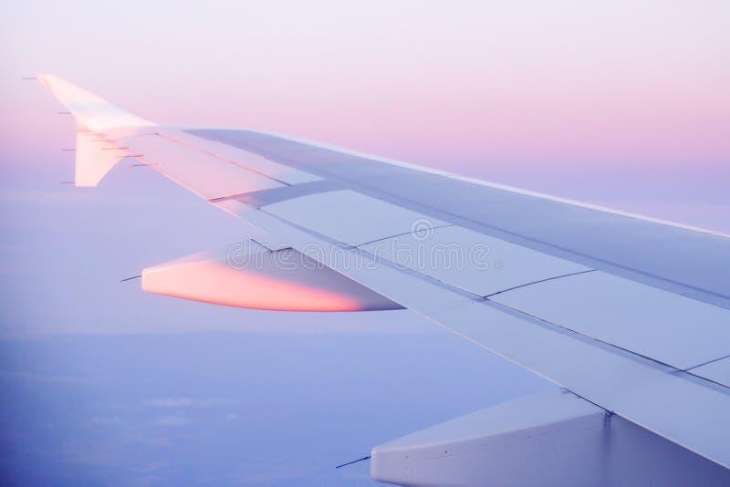 El avión está volando con el rosa del cielo de la tarde imagen de archivo libre de regalías