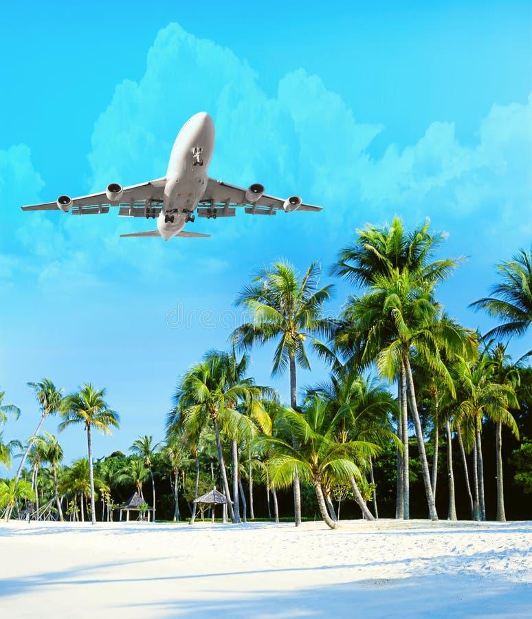 El avión vuela sobre las palmeras Concepto del viaje con los aviones y las palmeras imagen de archivo