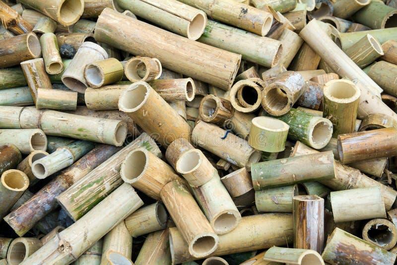 El bambú de la pila se corta en pedazos imágenes de archivo libres de regalías