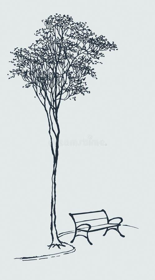 El banco en un parque cerca de un árbol alto ilustración del vector