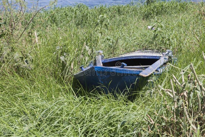 El barco de rowing de madera viejo abandonado en hierba recubre con caña foto de archivo