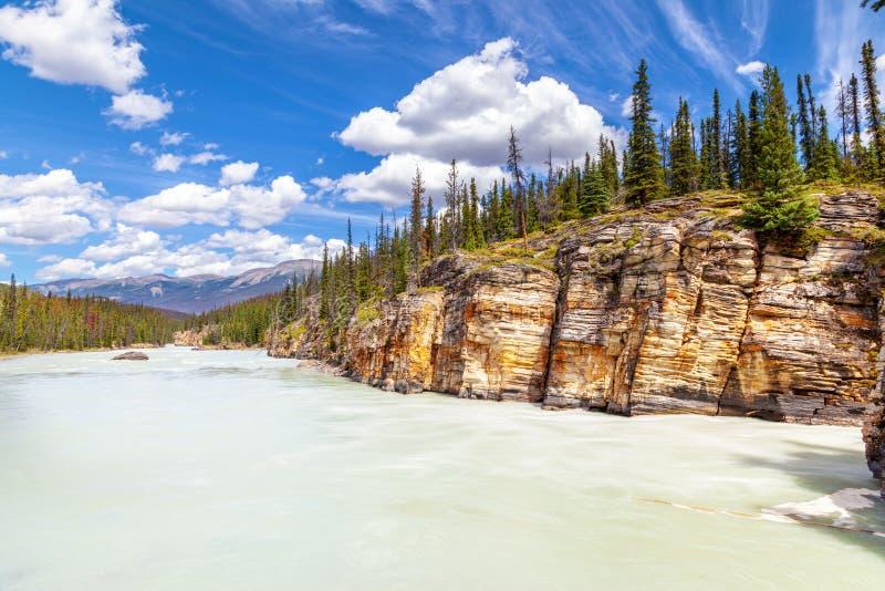 El barranco en Athabasca cae en Jasper National Park, Alberta fotografía de archivo