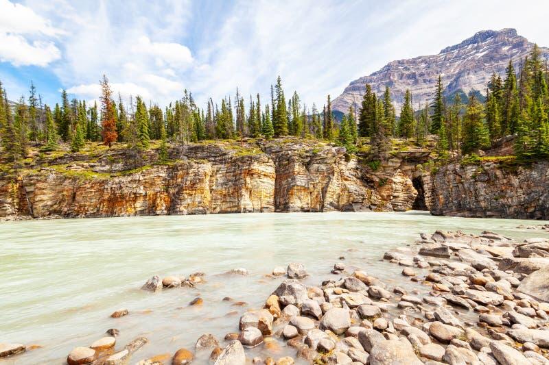El barranco en Athabasca cae en Jasper National Park, Alberta foto de archivo