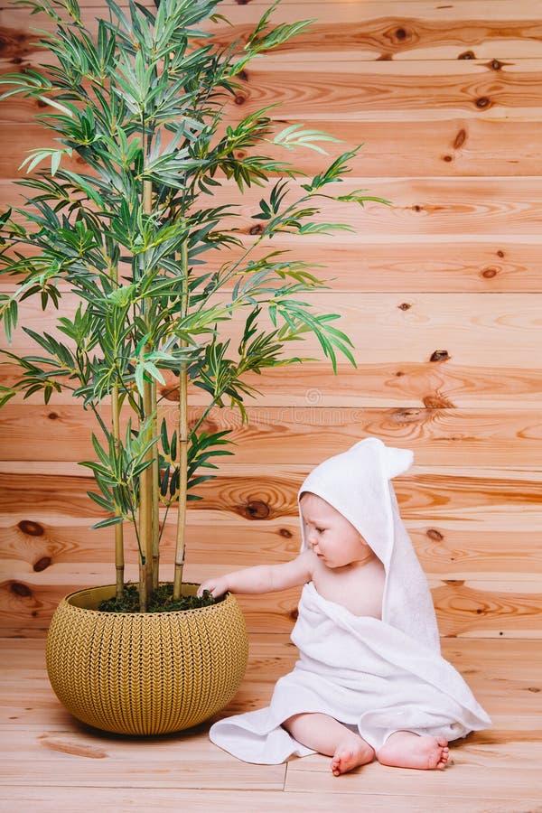 El bebé envuelto en una toalla blanca que se sienta en fondo de madera cerca de un árbol de bambú en pote foto de archivo libre de regalías