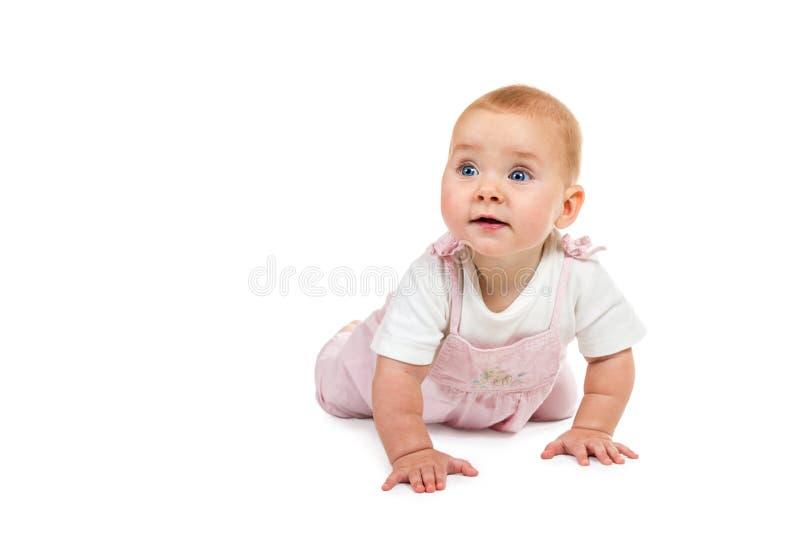 El bebé está en todos los fours imagenes de archivo
