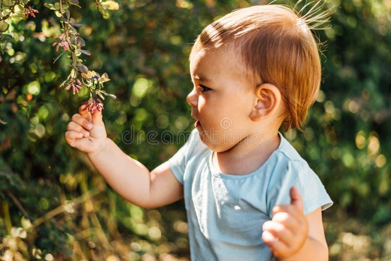 El bebé toca hojas verdes. La educación en casa, la vida ecológica, consciente, cercana al desarrollo natural. Día soleado fotos de archivo
